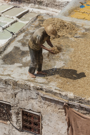 fez: FEZ, MOROCCO - JUNE 10. 2016: Workers at the Chouwara tannery in Fez, Morocco. Editorial