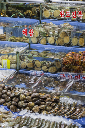 fischerei: Noryangjin Fisheries Wholesale Market , Expansive wholesale & retail market with stalls offering hundreds of types of fish & seafood. Editorial