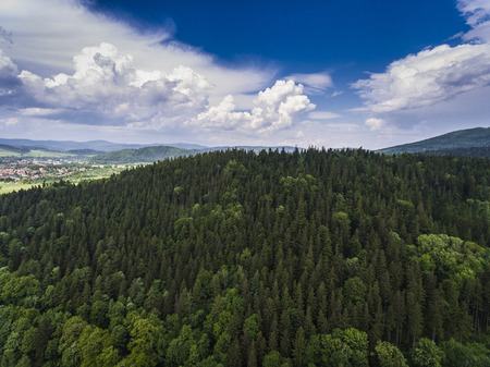 Aerial view of the summer time in mountains near Stronie Slaskie town in Poland. Pine tree forest and clouds over blue sky. View from above.