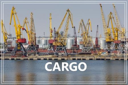 Cargo.Container cranes in cargo port terminal.