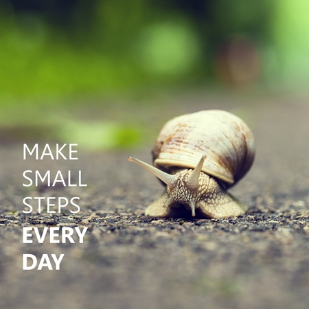 Make Small Steps Every Day. Small brown snail.