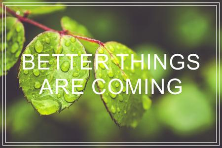 Better Things Are Coming. Green leaves background. Zdjęcie Seryjne