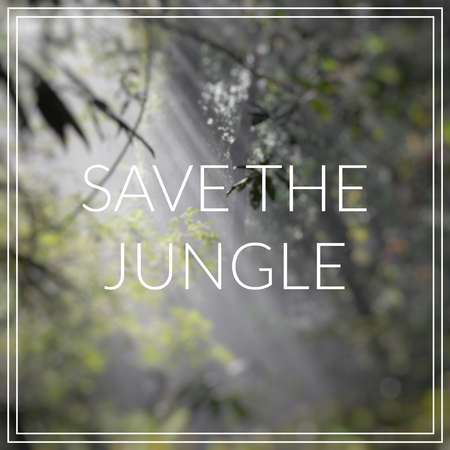 Save the Jungle. Sunlight rays pour through leaves in a rainforest.