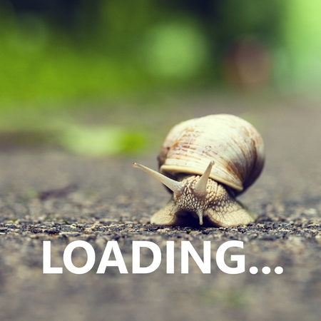 Loading. Small brown snail.