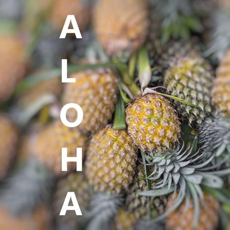 Aloha. Fresh pineapple in local market. Zdjęcie Seryjne