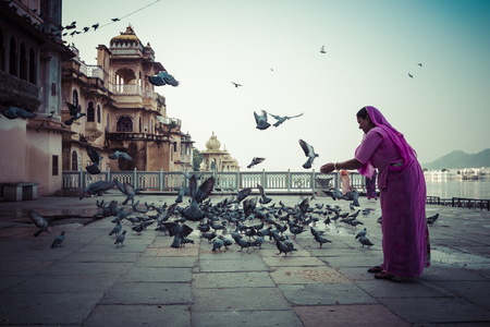 Woman feeding Pigeons in Udaipur, India.