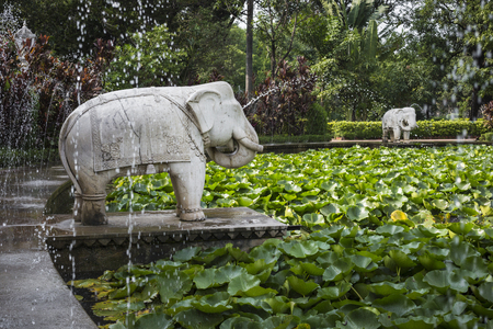 Saheliyon-キ-バーリ (乙女の中庭) はインド、ウダイプルの主要な庭 写真素材