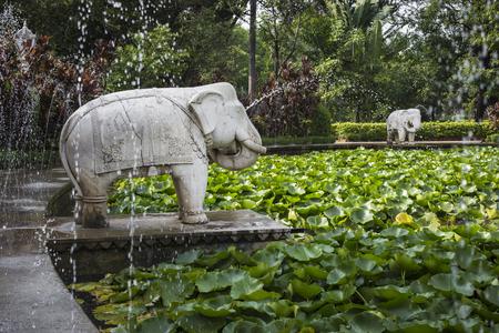 Saheliyon-ki-Bari (처녀의 안뜰)는 Udaipur, India의 주요 정원입니다. 스톡 콘텐츠