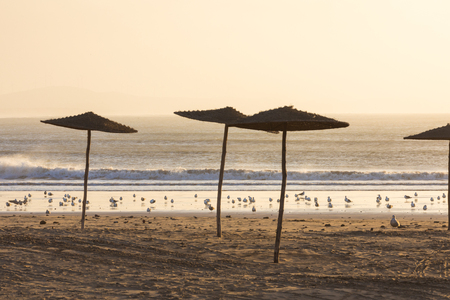 Sunset in the background in the beach at Essaouira, Morocco.