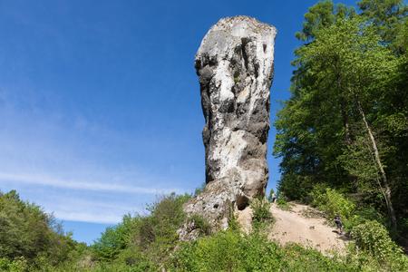 Limestone monadnock, rock called Maczuga Herkuklesa (Hercules cudgel or bludgeon). Jurassic rock formation with Pieskowa Skala Castle in the background in Ojcow National Park near Krakow