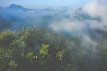 Aerial view of tropical rainforest. North Laos. Southeast Asia. Photo made by drone from above. Bird eye view.