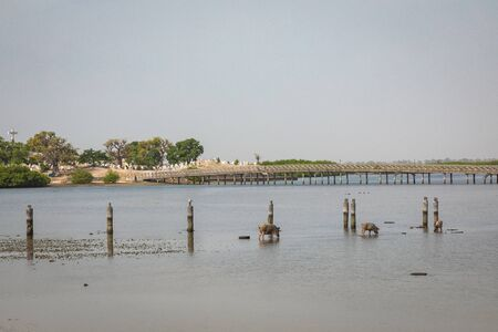View over historic Fadiauth Island. Senegal. West Africa. Stock Photo