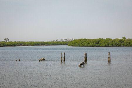 View over historic Fadiauth Island. Senegal. West Africa. Banco de Imagens