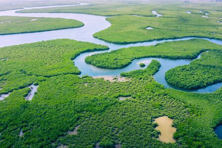 Aerial view of Amazon rainforest in Brazil, South America. Green forest. Bird's-eye view.