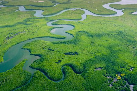 Aerial view of Amazon rainforest in Brazil, South America. Green forest. Bird's-eye view. Banque d'images