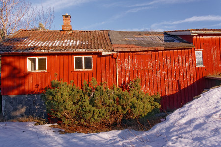 old barn in winter: Big red barn, wooden wall decor. Destroyed the roof of the building. Farm in winter. Winter scenery, snow on the rocks. Coniferous forest around. Kragero, Telemark municipality. Region of southeastern Norway. Skagerrak coast.