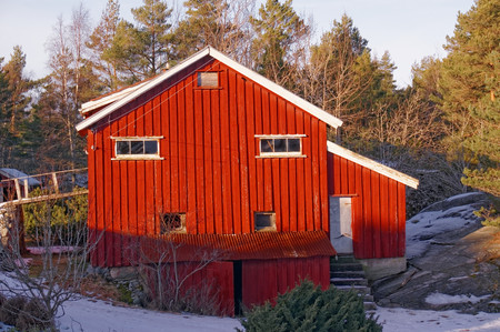 Wall cladding large red barn and wooden wall decor. Destroyed the roof of the building. Farm in winter. Winter scenery, snow on the rocks. Coniferous forest around. Kragero, Telemark municipality. Region of southeastern Norway. Skagerrak coast.