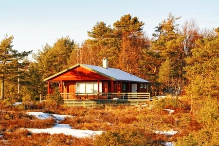 Norwegian vegetation on the coast surrounded by red cottage with a big green terrace. Around the spruces, pines, heathers in Winter Coat. Winter in Telemark municipality. Region of southeastern Norway. North Sea Coast. Skagerrak coastline. Norwegian lands