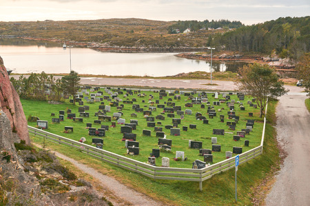 mosses: Svellingen, Norway - October 2, 2016: Rural cemetery in autumn in Norway island. Around the rocks covered with mosses and lichens. Near the fjord. October colors. Islands region in the province of Trondelag. Editorial