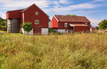 outflow: Nord Dyroy, Norway - July 31, 2016: Wooden buildings. Rural landscape, an old fishing village on a small island in the Norwegian Sea. Red traditional barn for hay.