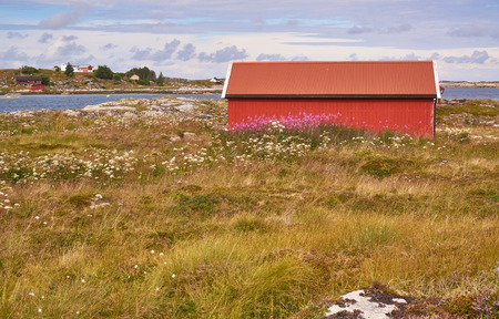 algal: Rural landscape, lanscapes from norwegian island in the summer -  red fishermans hut old fishing village. Around the rocks covered with mosses and lichens. Windy day. Stock Photo