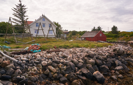 mosses: Nord Dyroy, Norway - July 31, 2016: Around the rocks covered with mosses and lichens.  Rural landscape, an old fishing village on a small island in the Norwegian Sea.  Windy day. Editorial