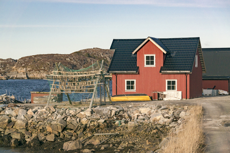 Red wooden fishing house and atlantic cod stockfish hanging, drying flake (hjell). Aquaculture and seafood from the Norwegian Sea, Froya Hitra region, Norway