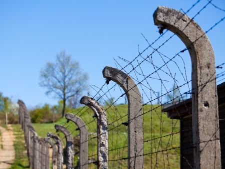 Gross-rosen concencration camp - fence photo