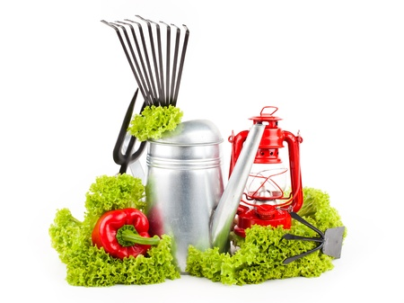 Garden tools and fresh vegetables isolated on white  Stock Photo - 16696556
