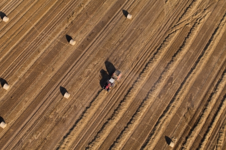 combine harvester: aerial view of harvest fields with combines