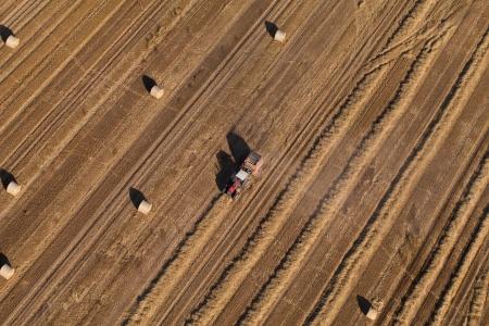 cosechadora: Vista aérea de campos de la cosecha con combinadas
