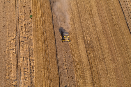 combines: aerial view of harvest fields with combines