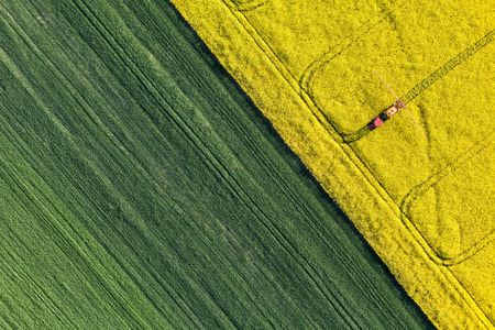 birds eye view: aerial view of harvest fields with tractor in Poland