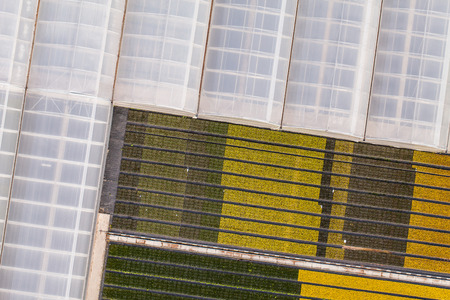 market gardener: aerial view of greenhouses in Poland