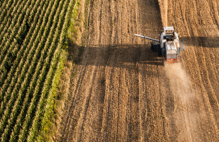 agriculture industrial: aerial view of combine on the harvest field in Poland