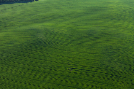 aerial view of harvest fields in Poland