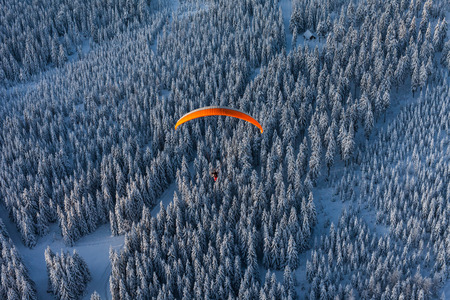 vue aérienne de paramoteur survolant la forêt en hiver en Pologne