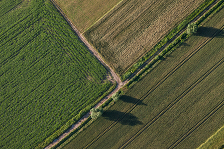 clowds: aerial view of the harvest fields  morning landscape in Poland