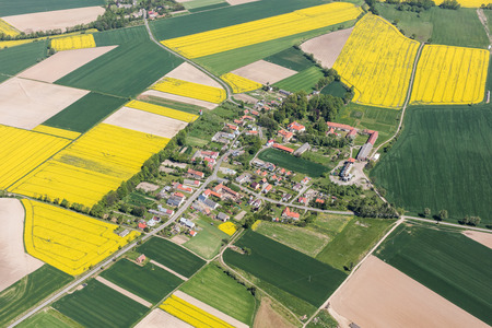 ポーランドの Piotrowice Nyskie の村の近くの黄色の収穫の畑の空撮 写真素材