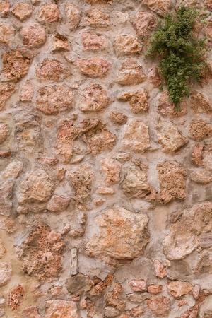 rock wall background Archivio Fotografico - 117006388