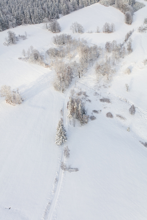 aerial view of the mountain forest landscape in winter Archivio Fotografico - 117006390