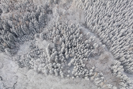 aerial view of the mountain forest landscape in winter Archivio Fotografico - 117003363