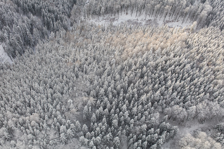 aerial view of the mountain forest landscape in winter Archivio Fotografico - 117009255