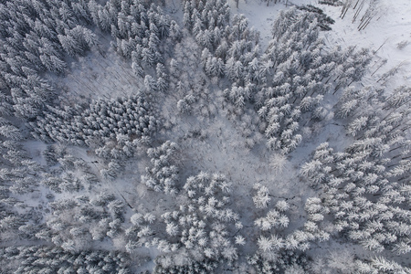 aerial view of the mountain forest landscape in winter Archivio Fotografico - 117009256