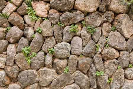 rock wall background Archivio Fotografico - 117009263