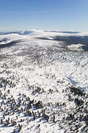 aerial view of the winter  mountain landscape in Poland Archivio Fotografico - 119668046