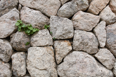 rock wall background