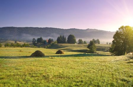 early morning rural landscape with sunbeams