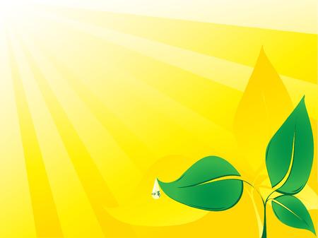 enviromental: Ilustraci�n de ambiental de vector con gota de agua y plantas