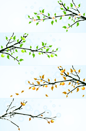 vector four seasons floral backgrounds with apple tree. Elements for design Stock Vector - 4198415